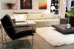 elegantly simplified living room maximization